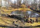 Skáceli nebezpečný topol v zámeckém parku