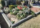 Reakce: Srnky floristky rabují hroby?